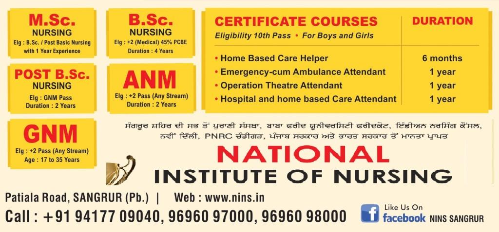 NINS - Leaflet - Copy